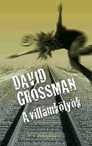 David Grossman - A villámkölyök