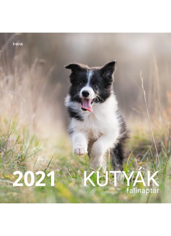 Kutyák falinaptár  - 2021