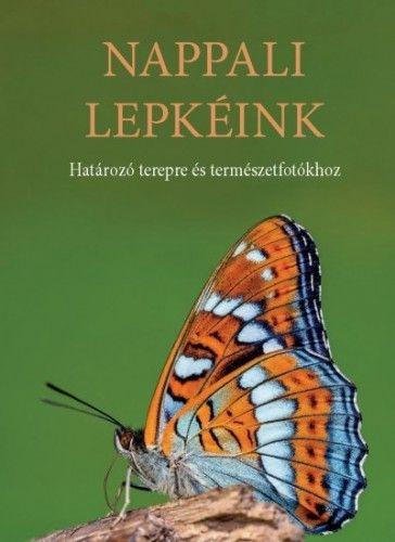 Ilonczai Zoltán - Nappali lepkéink