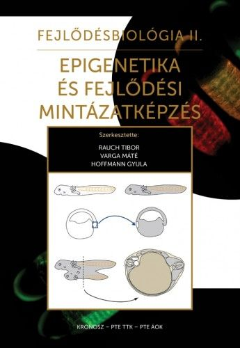 Varga Máté - Fejlődésbiológia II.