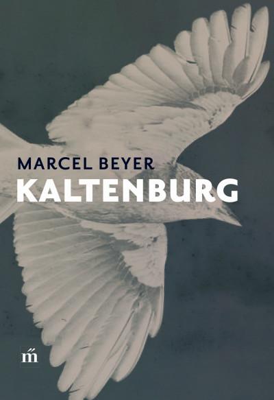 Marcel Beyer - Kaltenburg