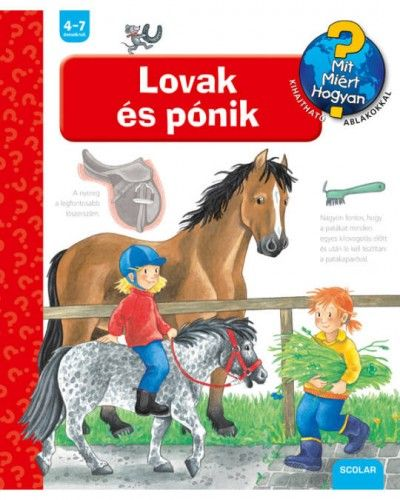 Andrea Erne - Lovak és pónik