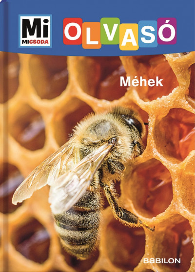 Rozgonyi Sarolta - Méhek - Mi Micsoda Olvasó