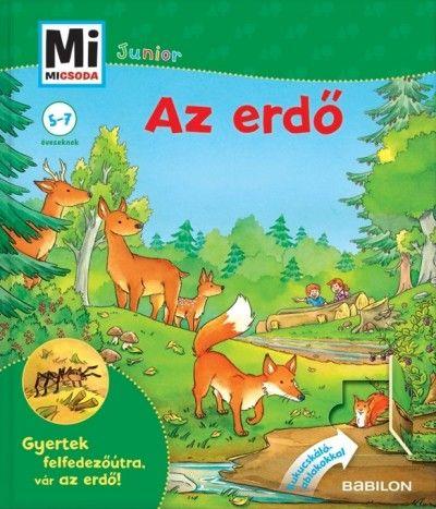Sabine Stauber - Az erdő - Mi micsoda Junior 10.