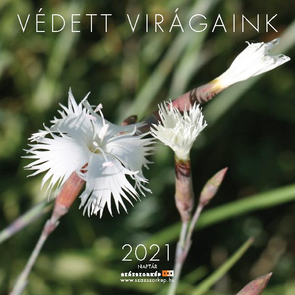Védett Virágaink naptár 2021