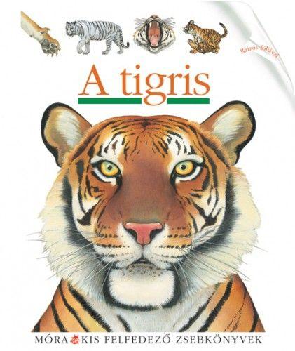 Sylvaine Peyrols - A tigris
