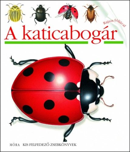Pascale de  Bourgoing - A katicabogár