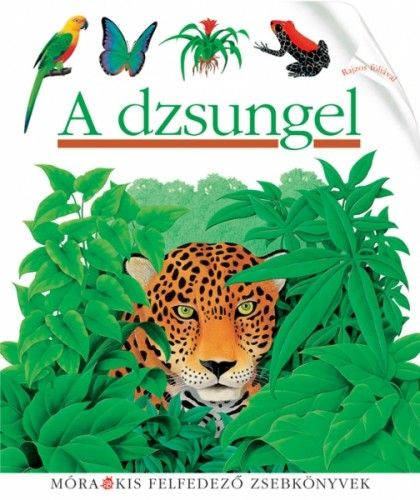 Tüske-Hegedüs Andrea - A dzsungel