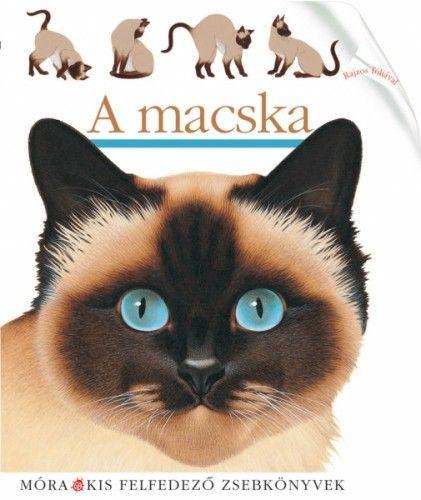Pascale de  Bourgoing - A macska