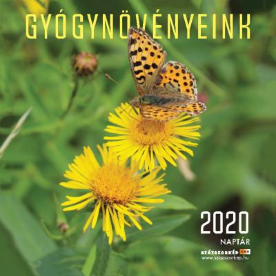 Gyógynövényeink naptár 22x22 cm - 2020