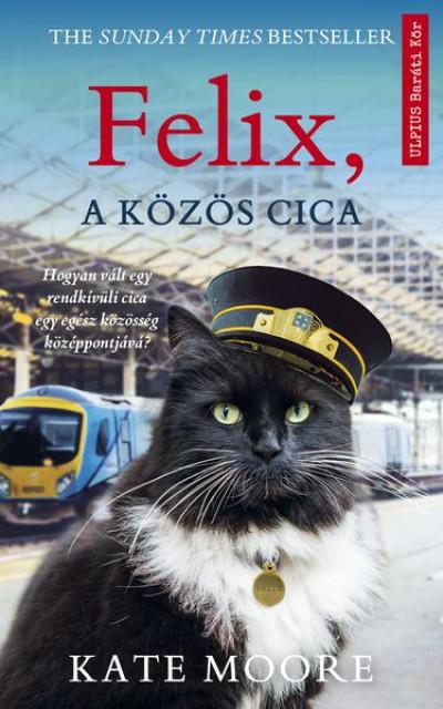 KAte - Felix, a közös cica
